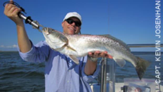 Monster speckled trout can be caught as far north as the Chesapeake Bay Bridge.