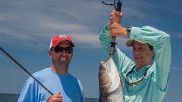 Big CBBT cobia can put a serious bend in your fishing rod.