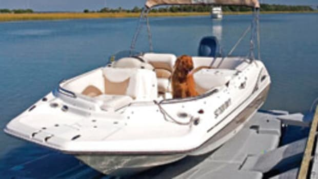 A picture of your best friend aboard can mean a donation to your local shelter.