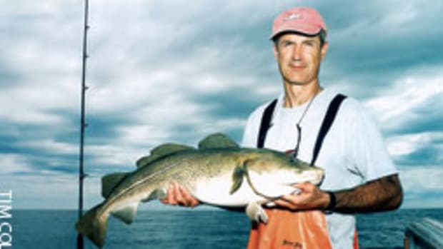 The author and his friends have had great summer cod fishing in 160 to 200 feet east of the north end of Stellwagen Bank.