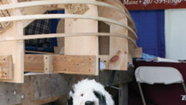 A Portuguese water dog stands guard over a framed hull displayed by The Apprenticeshop at this summer's WoodenBoat Show.