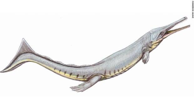 200421052216-01-prehistoric-crocodiles-intl-scli-exlarge-169