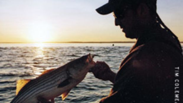 Schoolies love a 4-inch worm at sunrise or sunset.