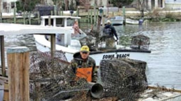 Watermen were paid $400 per day to help retrieve abandoned crab pots from the Bay.