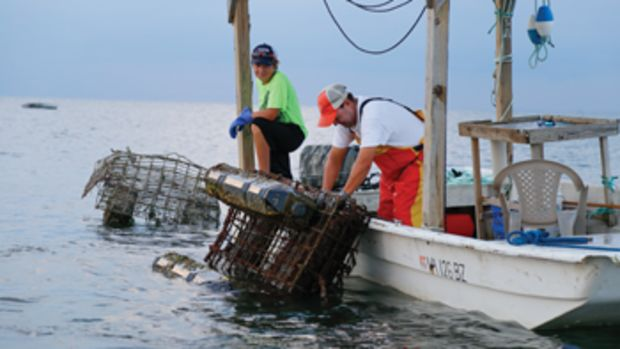 Twelve-year-old Sam Pruitt and his father use oyster aquaculture to bolster their earnings from crabbing and fishing.