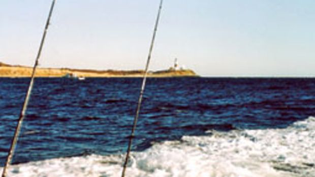 It's easy to fish for sea bass off Montauk, N.Y., in the morning, then spend the afternoon diamond-jigging for bass and blues in the rips closer to the point.