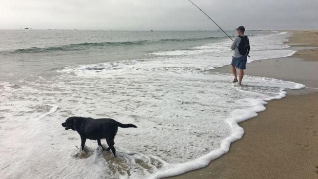 fishing-on-surf