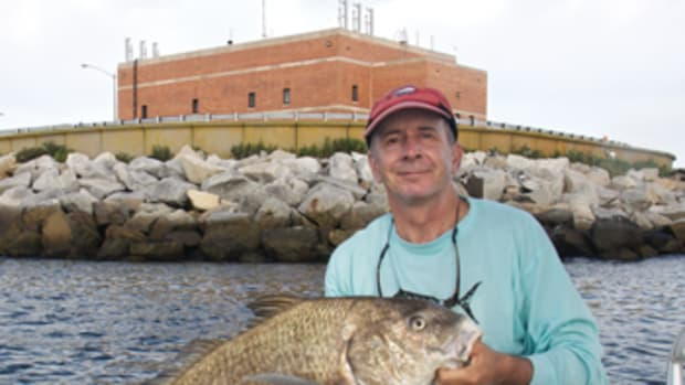 This 30-pound black drum was caught over structure at the Chesapeake Bay Bridge-Tunnel.