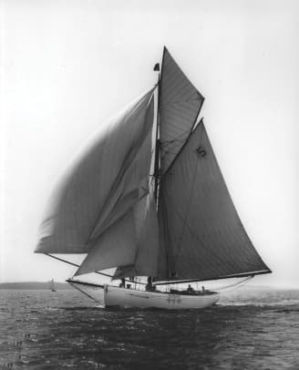 tally-ho-running-downwind