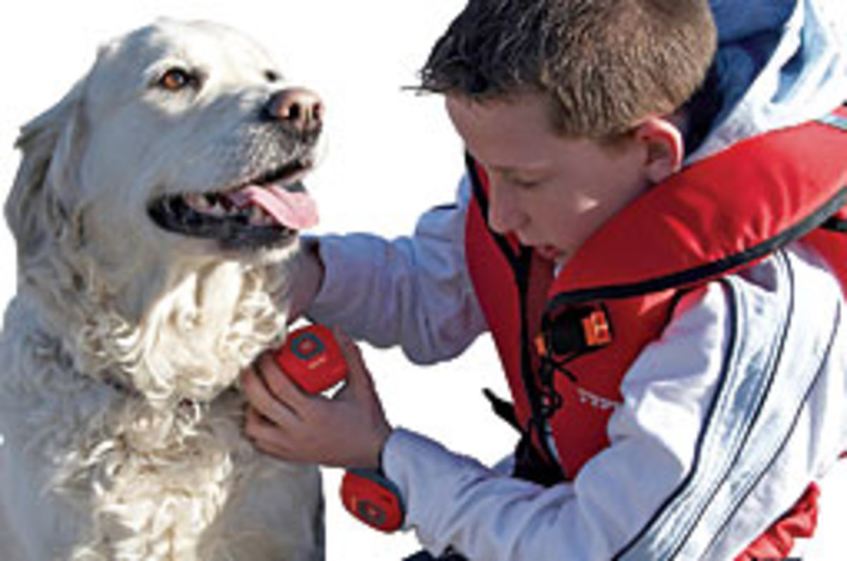 Raymarine's Life Tag provides an audible alert when a person or pet goes over the side.