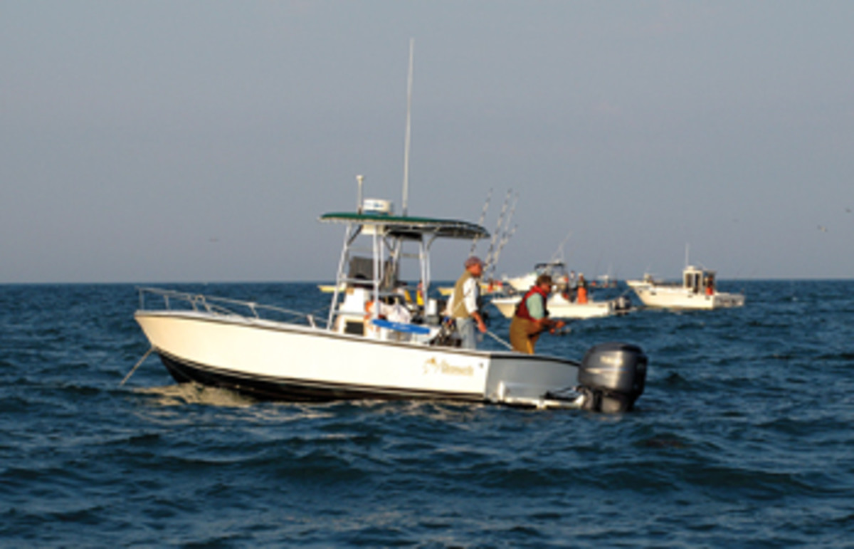 Chumming can be deadly when conditions are right and a trip-saver when fish are scattered.