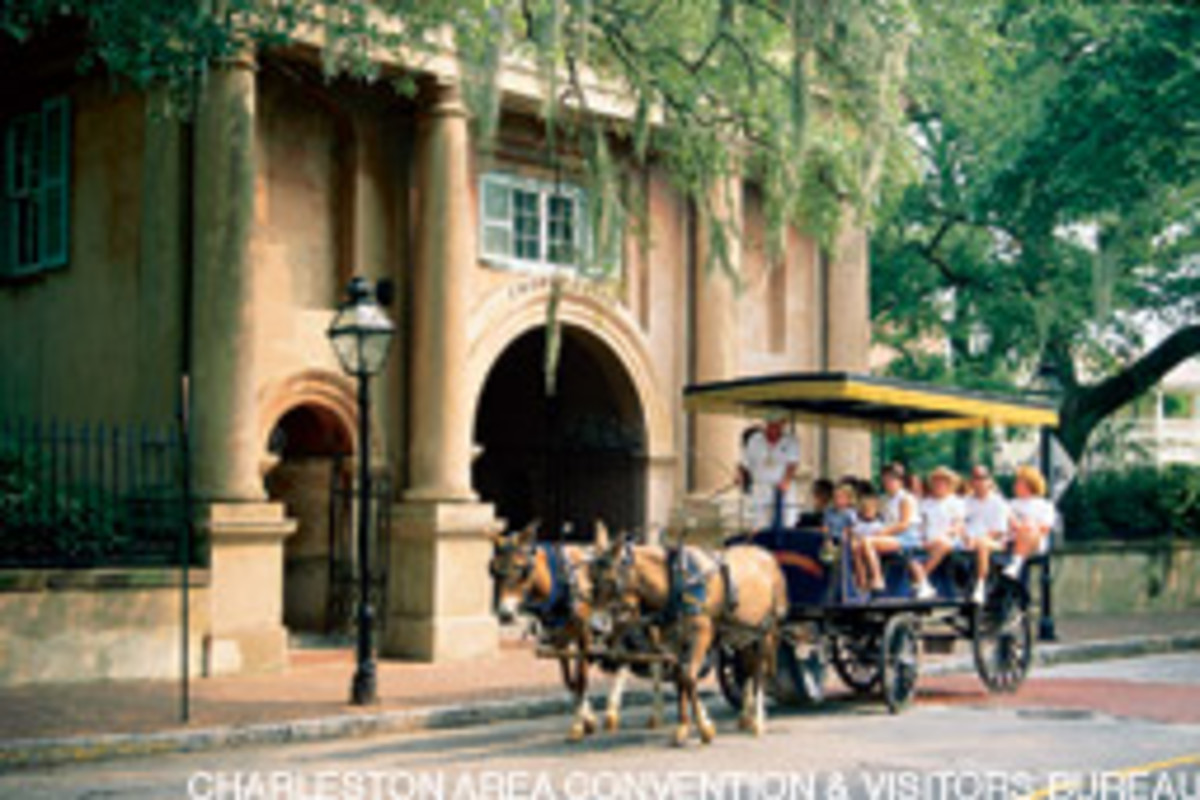 Charleston Carriage Tours takes visitors around the city.