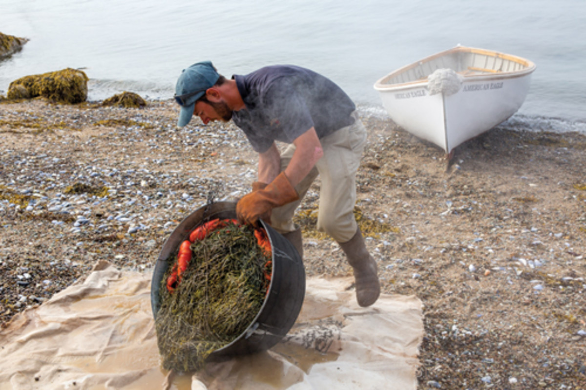 Mate Justin Schaefer prepares a lobster bake on Two Dory Island.