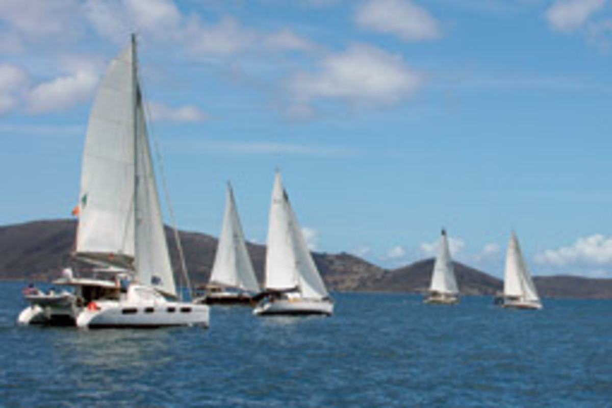 This year's Atlantic Cup offshore sailing rally from Tortola to Bermuda included 19 participants.