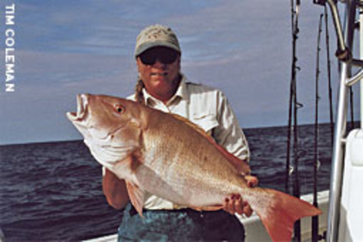 Many anglers like to catch the high-jumping exotics on their vacation, but those who want sometheing for the table charter boats to catch tasty snapper that can be cooked to your order at many restaurants on either side of Route 1.