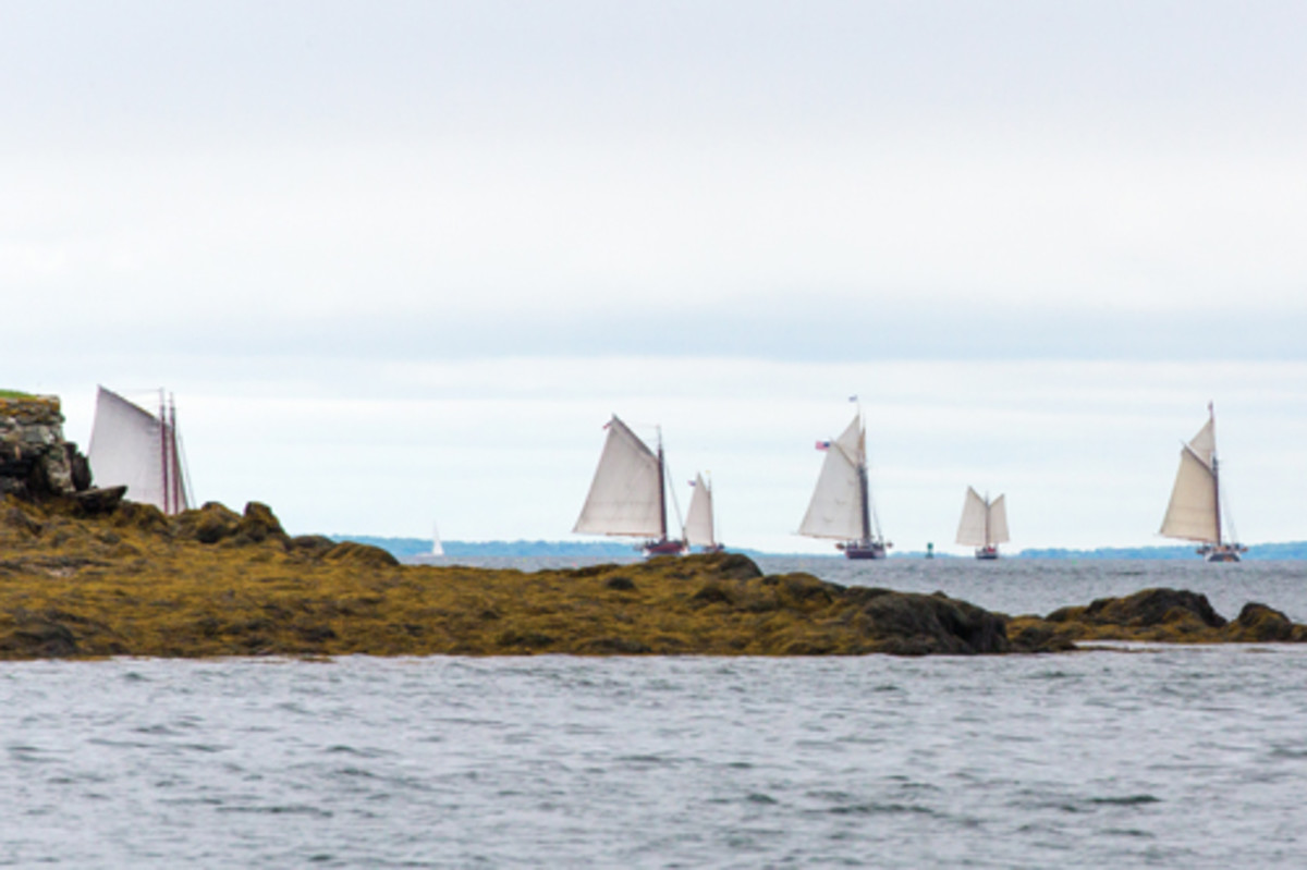 Ships depart Gilkey Harbor on the first leg of the Great Schooner Race.