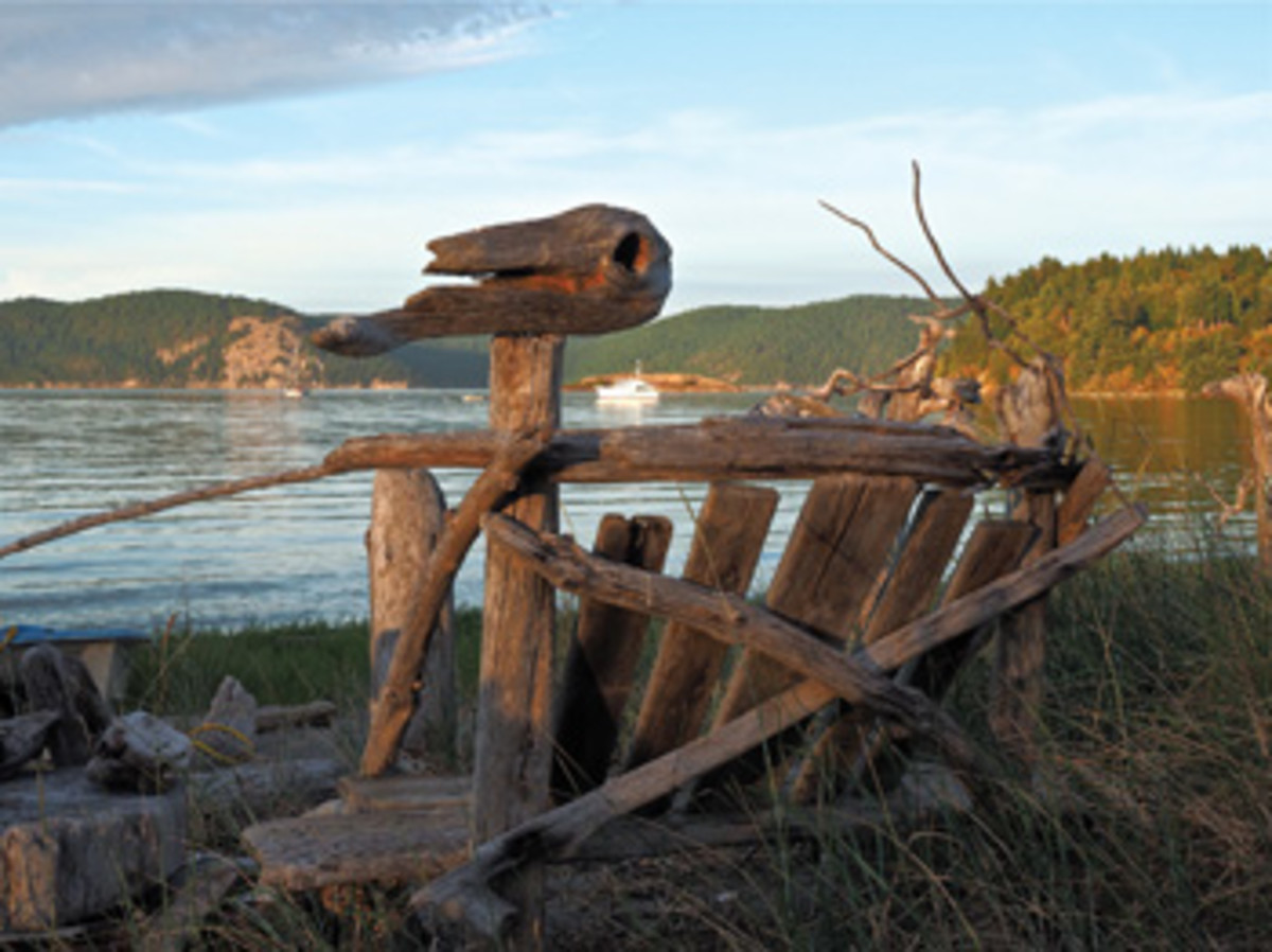A driftwood bench that looks out over Swifts Bay features what looks like the head of a dinosaur.
