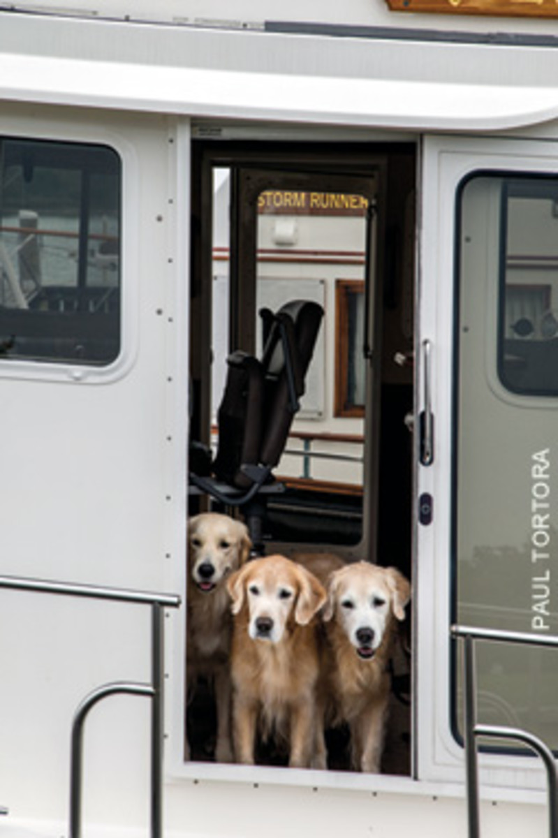 The Minards have logged 12,000 miles with various canine crewmenters.