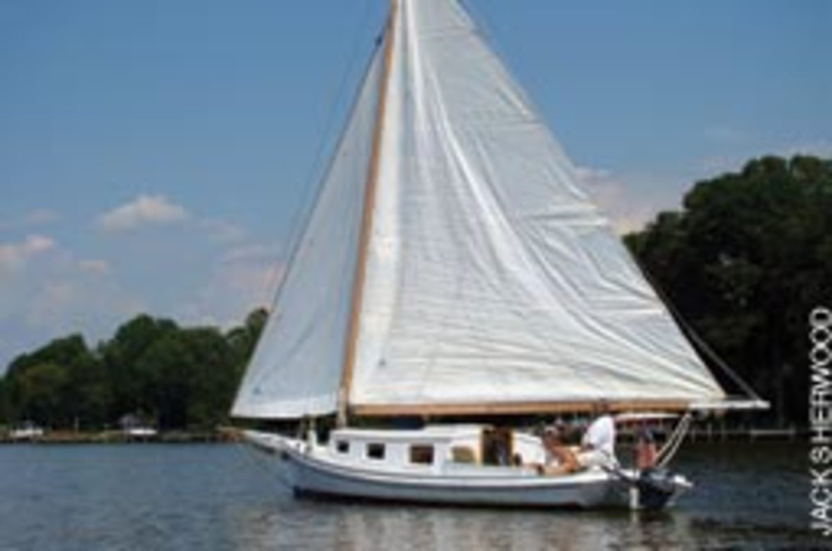 Wood fell hard for the skipjack - it was love at first sight.