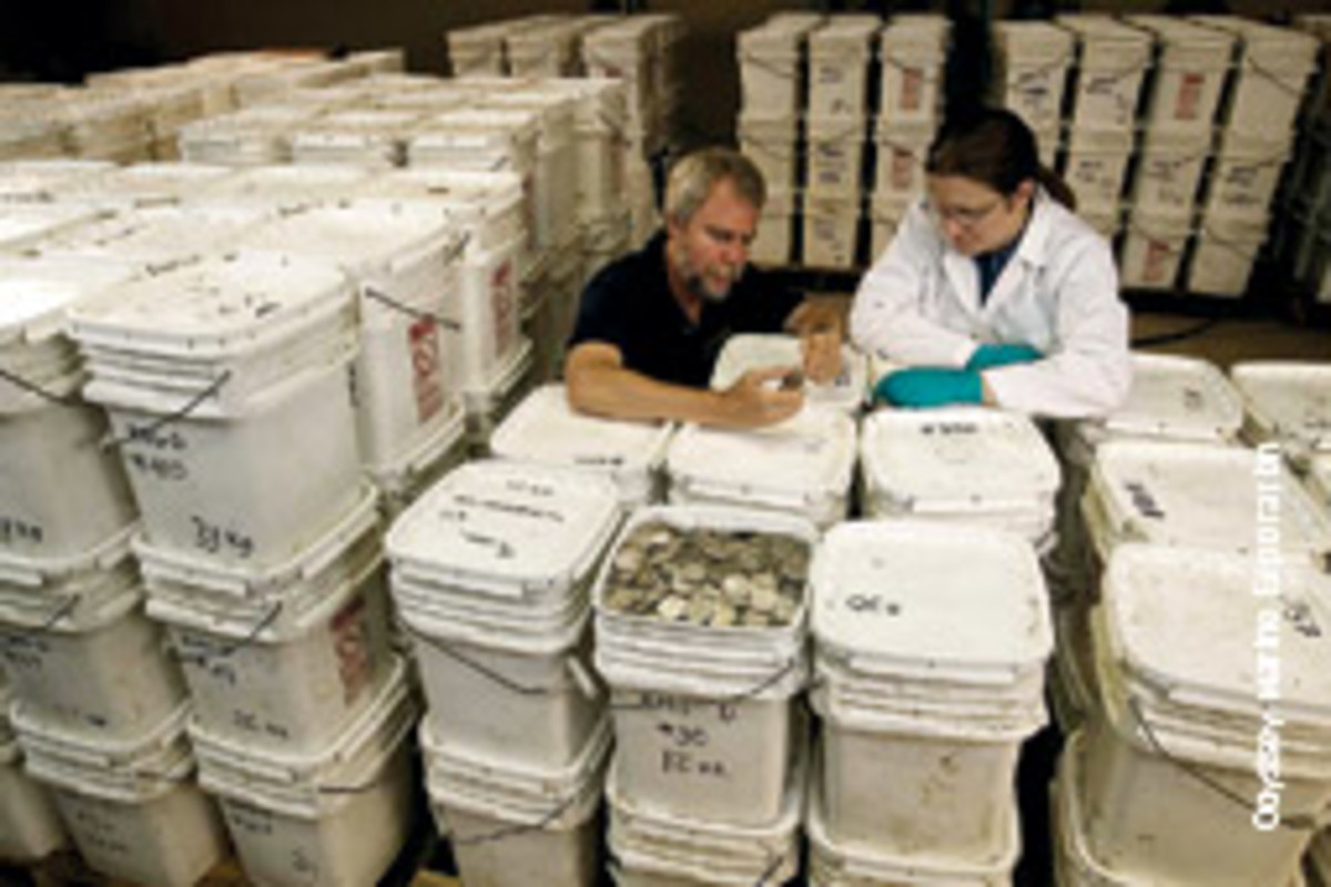 Coins and other artifacts are brought to the surface and taken to Odyssey's conservation lab. As part of its business plan, only items found in large quantities are put up for sale.