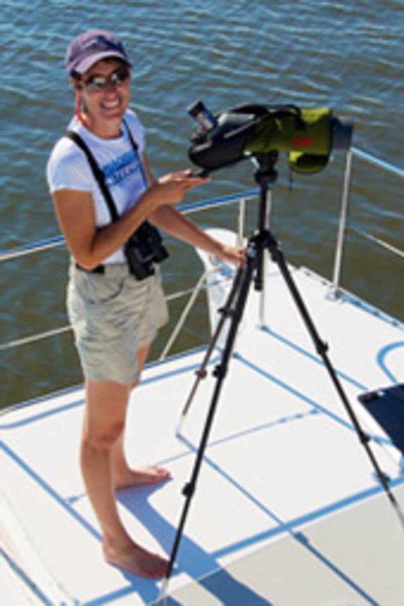 Boater and birder Diana Doyle founded Birding Aboard to encourage boaters to identify, record and report seabirds they encounter while cruising.