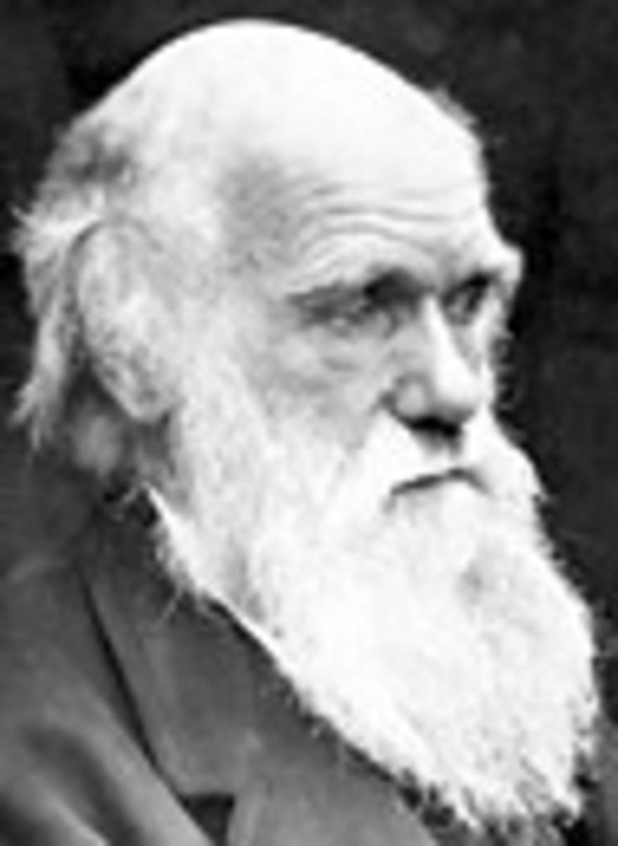 Charles Darwin 1809-1882