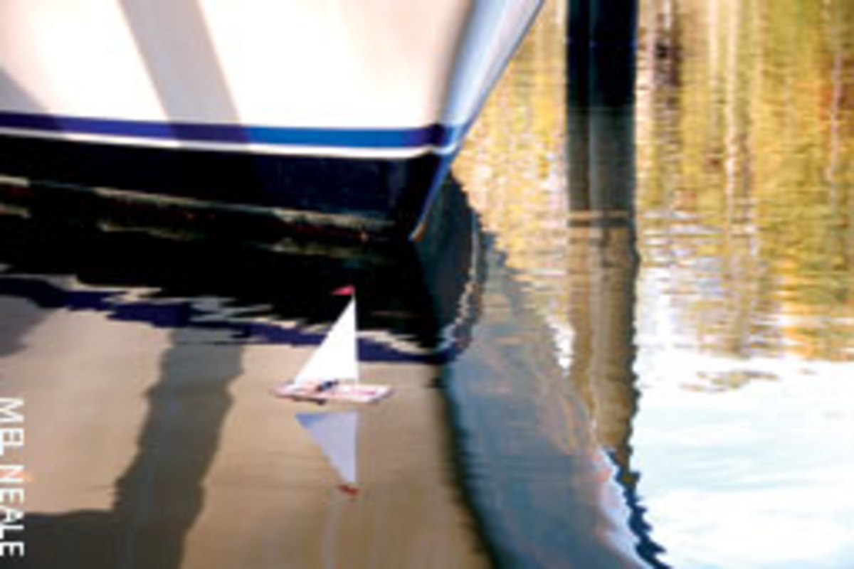THE GOOD SHIP RAT TRAP: Sure rats can swim, but there are more civilized ways to board a boat.