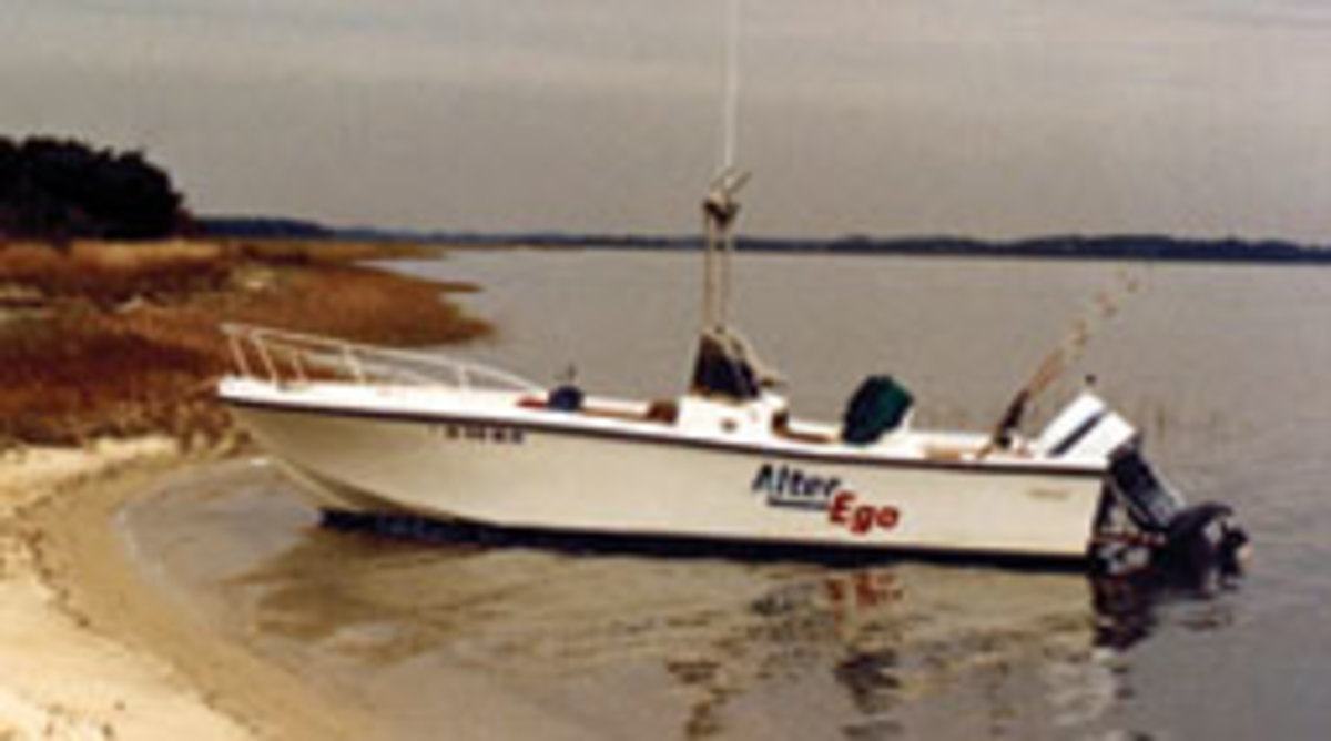 Alter Ego, shown during a camping trip in South Carolina in 1988.