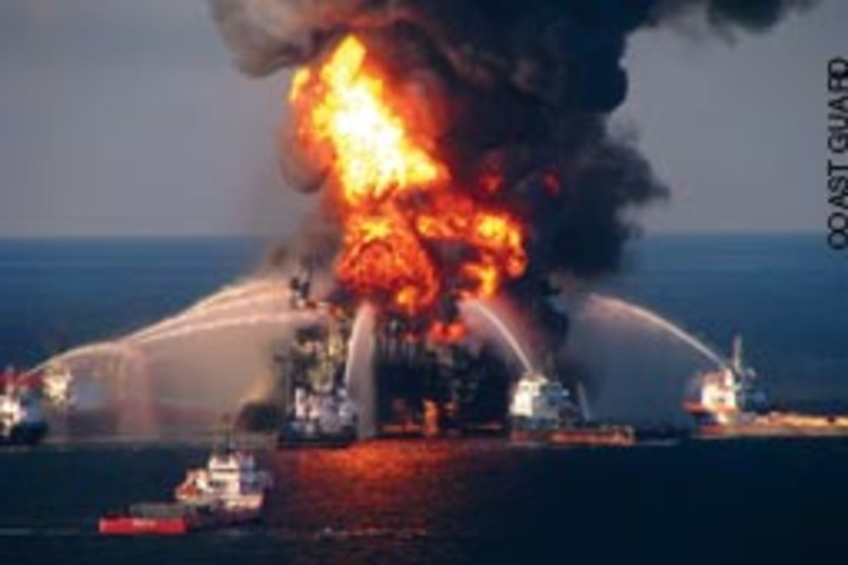 The Deepwater Horizon oil rig disaster is taking a toll on the environment and a host of industries, from commercial fishing to recreational marine.