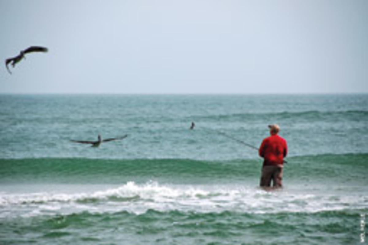 A surf-caster tries his luck under a watchful eye.