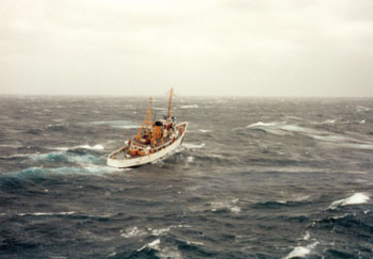 "The cutter Tamaroa battled atrocious conditions to save seven lives during the ""No Name Storm"" of 1991."