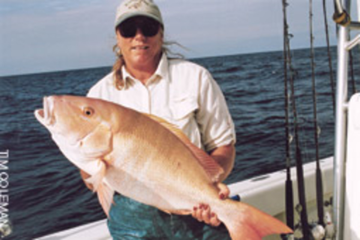 Large mutton snapper that also make a wonderful supper can be found on the edge of hard bottom, often around the 120-foot mark on the drop-off from the patch reefs to the open ocean.