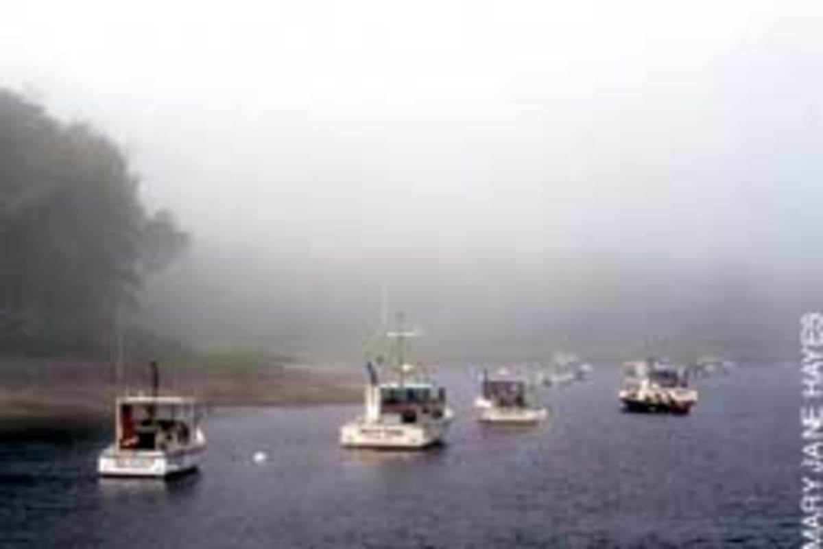 Maine's notorious fog rolls in all summer.