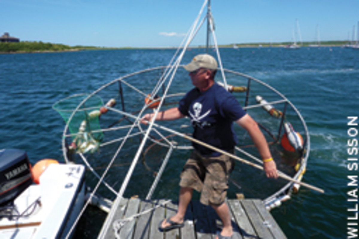 Lynch's bait pen holds a couple thousand menhaden, which the bass at Cuttyhunk couldn't resist.