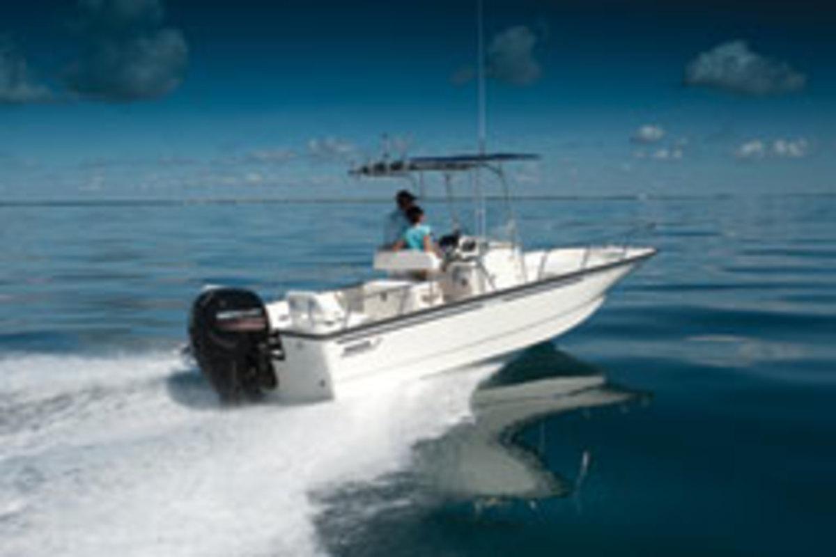 Boston Whaler 210 Montauk