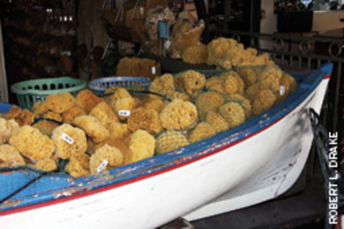 The sponge industry brought thousands of Greek families to Tarpon Springs in the early 1900s.