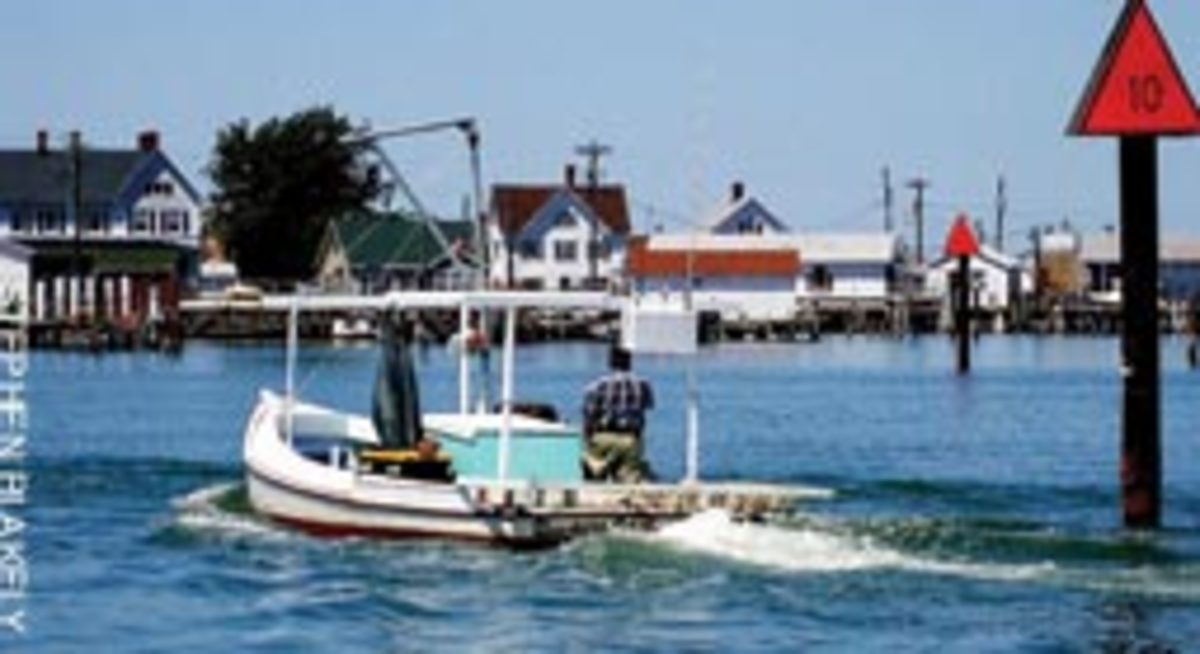 A waterman in Mailboat Harbor.