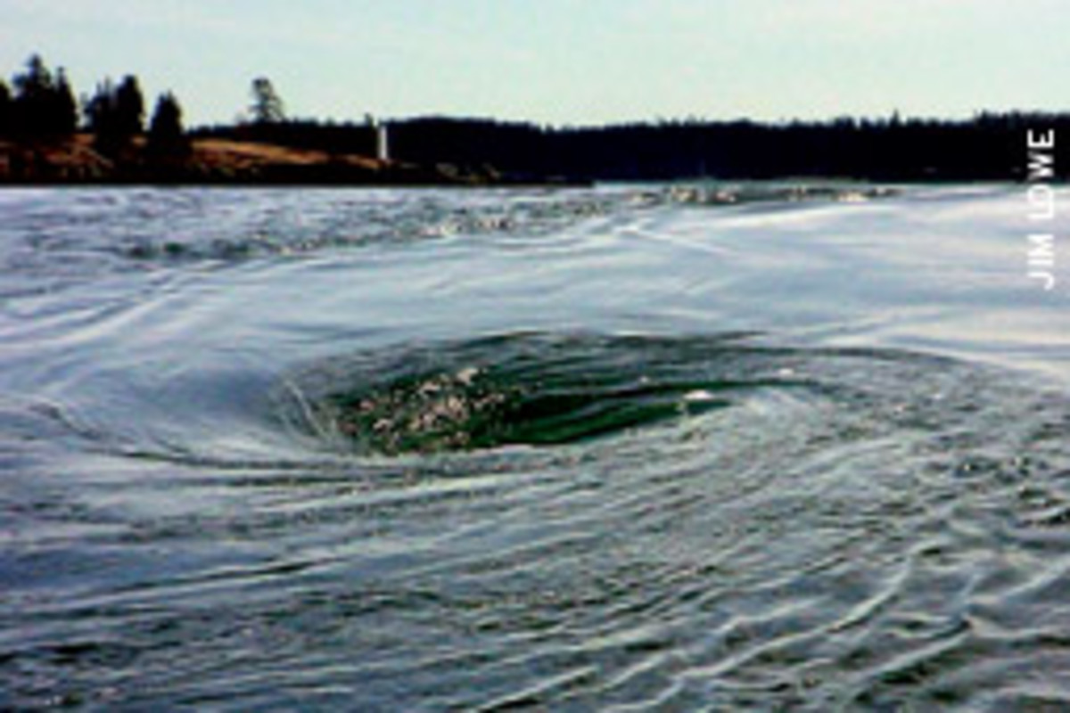 The Coast Guard hopes to harness the powerful whirlpool using a tidal generator.
