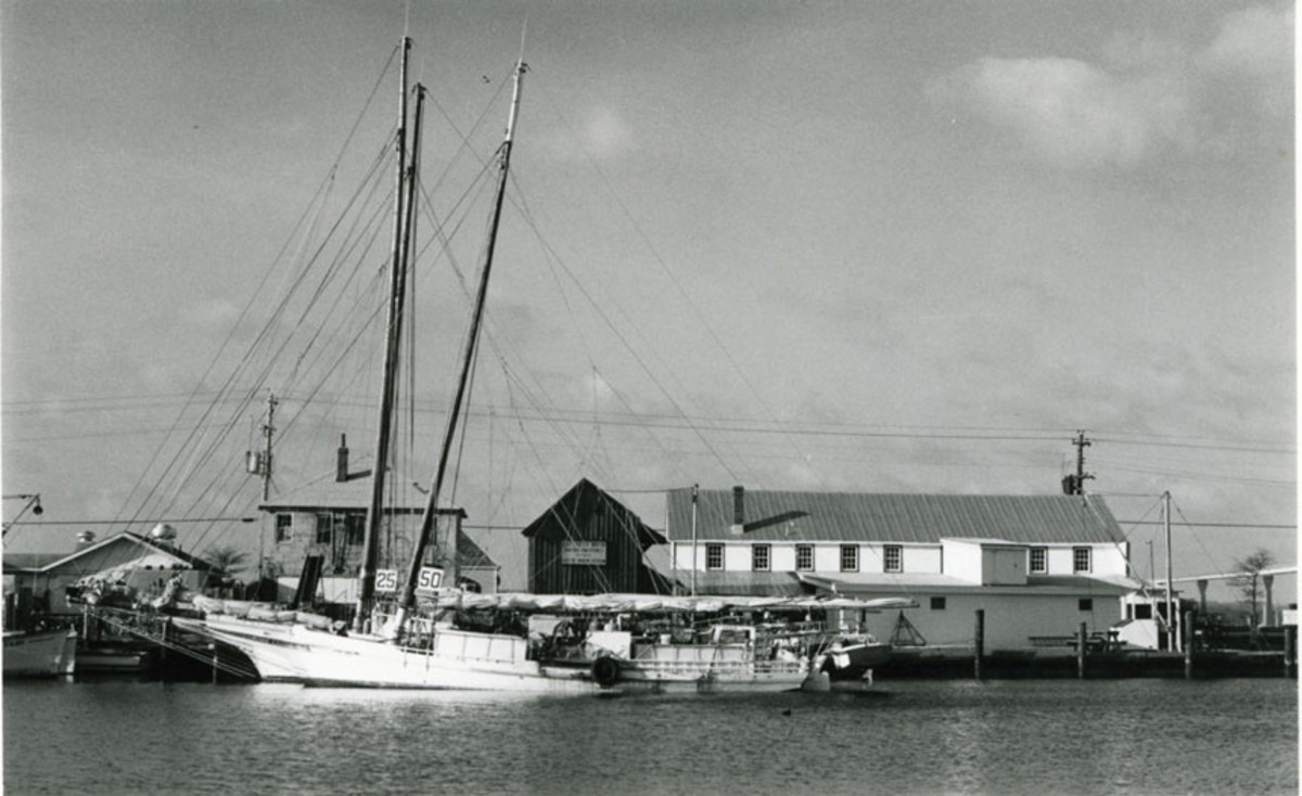 Three skipjacks, including Minnie V.,  docked behind J.C. Lore Oyster House, Solomons, Maryland, 1985.