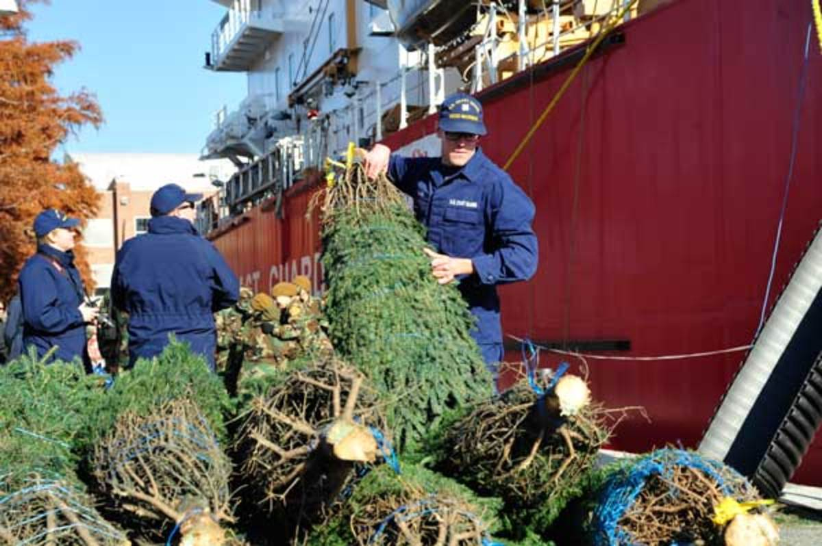 Video The Christmas Tree Ship Soundings Online