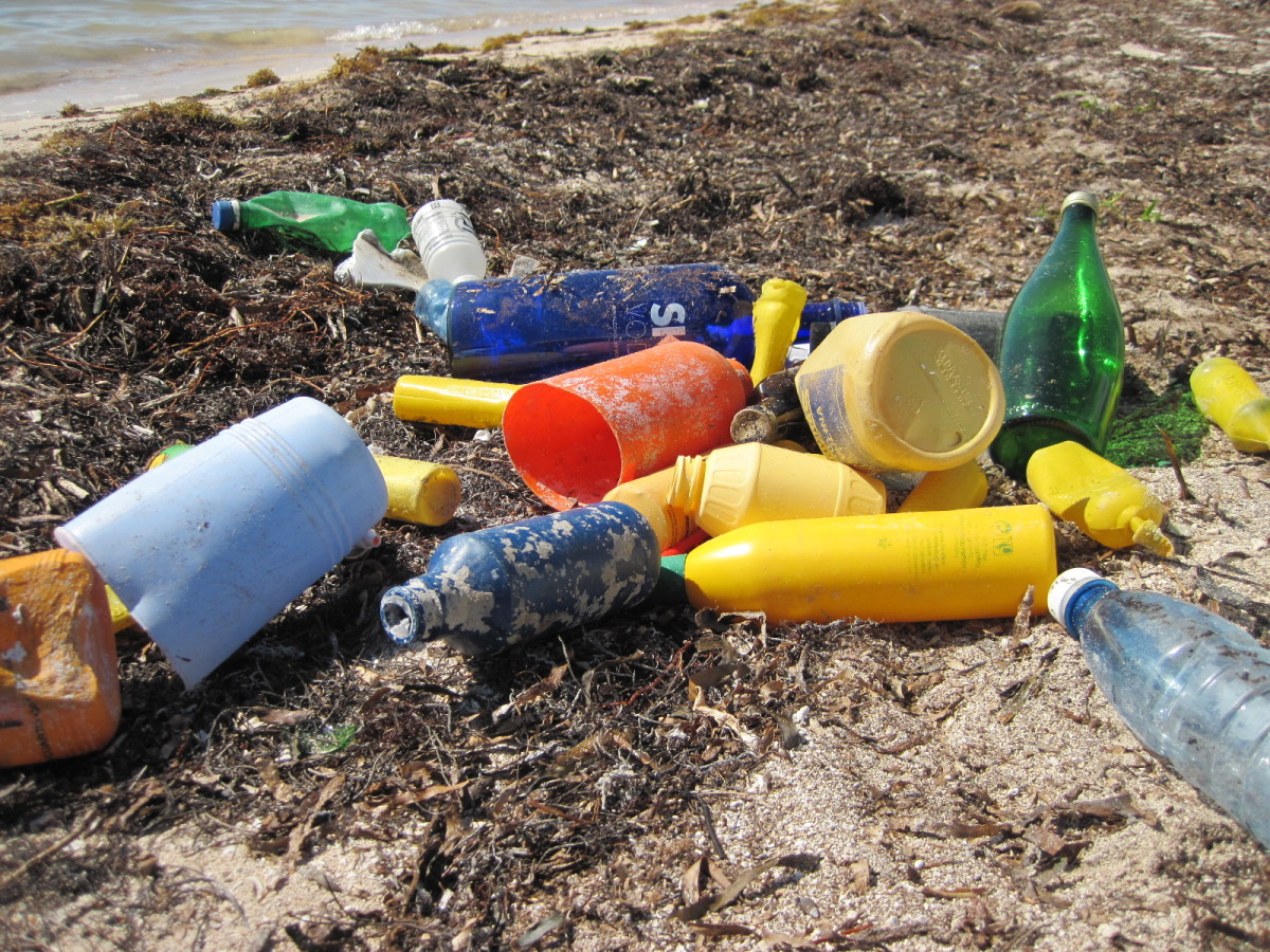 2014_CoastalCleanupCorp_Marine debris (plastic) that washed up on Elliott Key_0