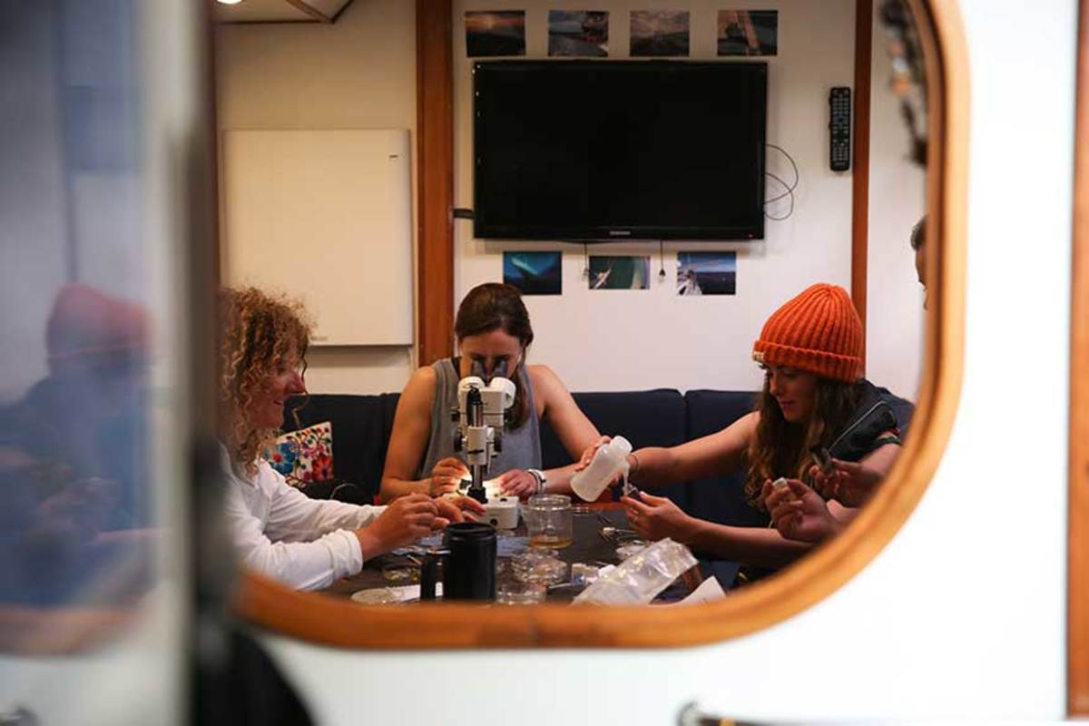When off watch, crew members aboard eXXpedition's July 2018 voyage to the north Pacific focused on citizen science and more.