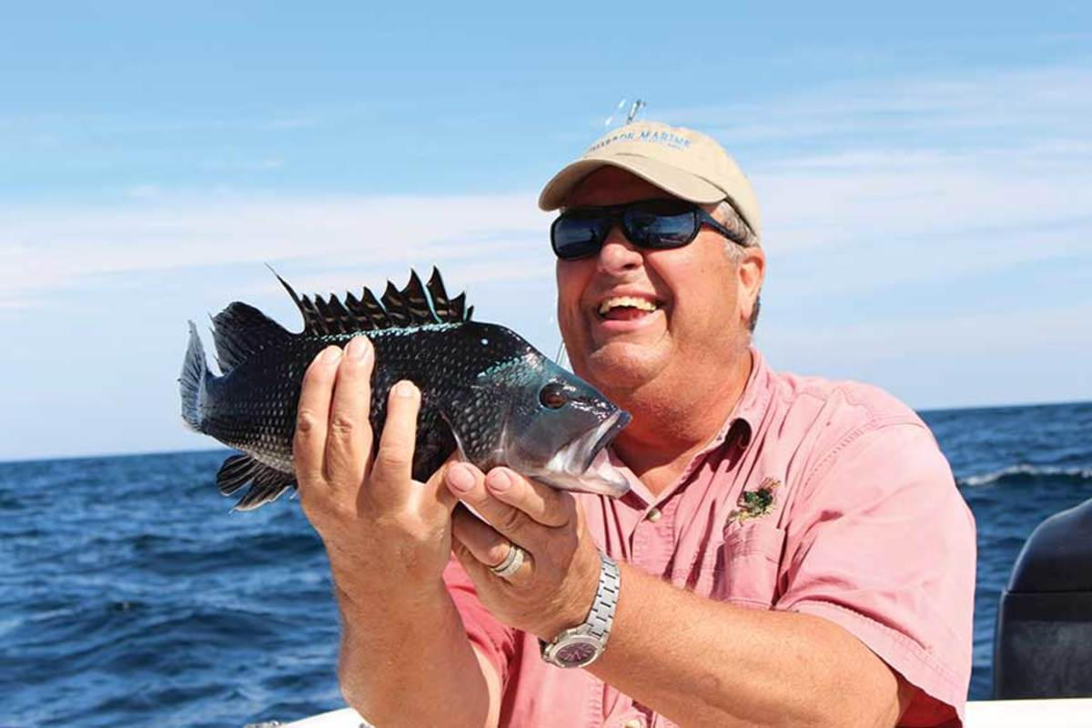 Black sea bass will bite unbaited jigs, but you'll have more success with a fish strip, a chunk of squid or a clam.