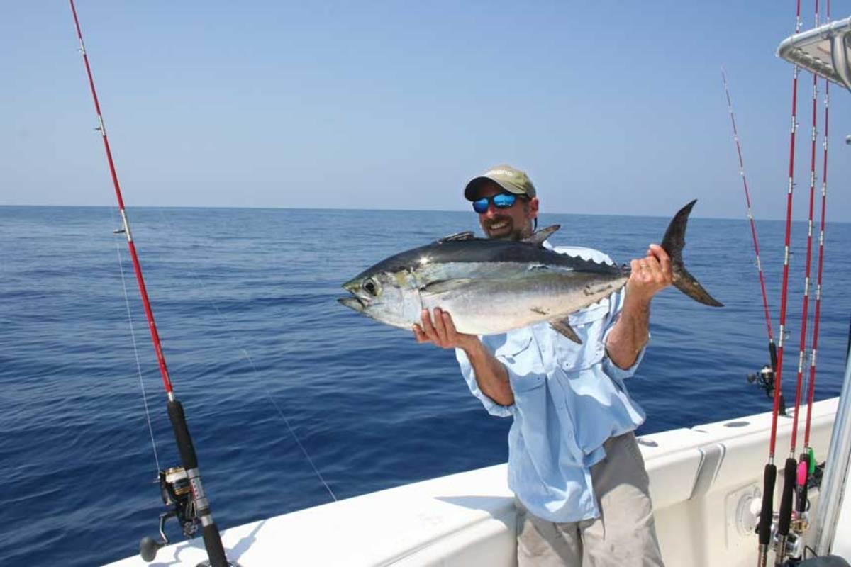 Blackfin tuna are biting in the Gulf of Mexico.