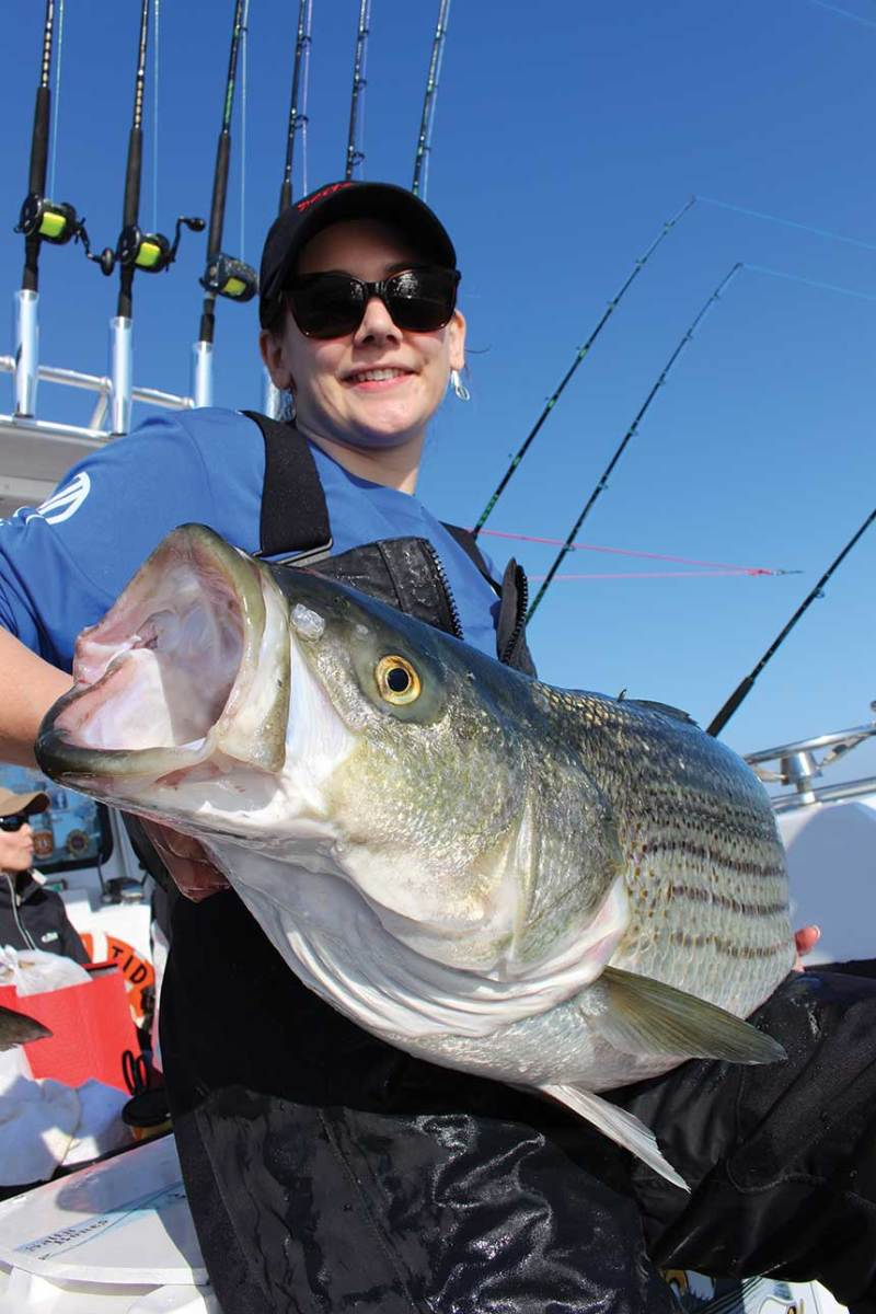 If you want to hook into 40-plus-inch fish during the month of May, trolling is one of the best ways to do it.