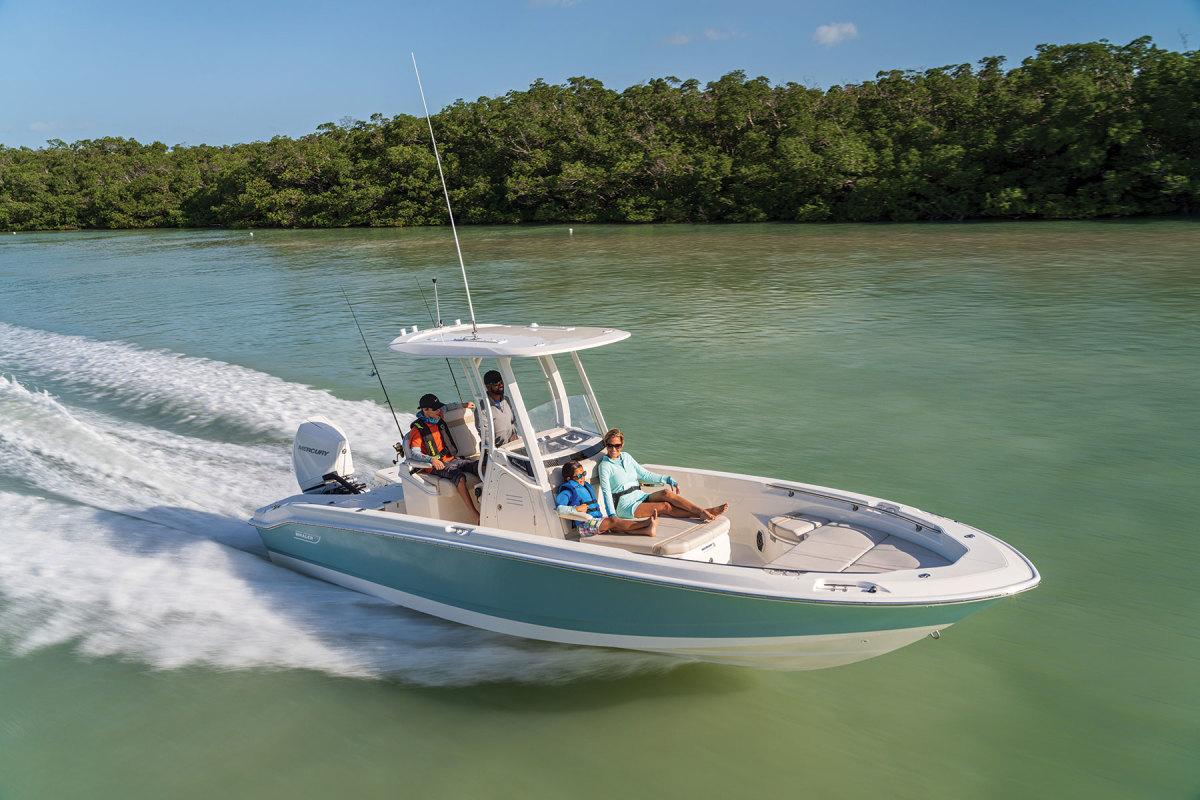 2021-Whaler-250-7R402217