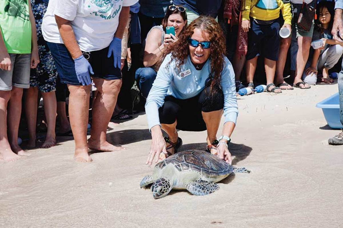 Zirkelbach sets the turtle free.