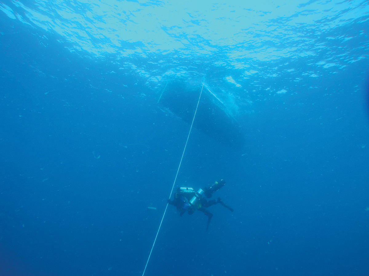 A diver descends 220 feet to the bottom of the Atlantic.