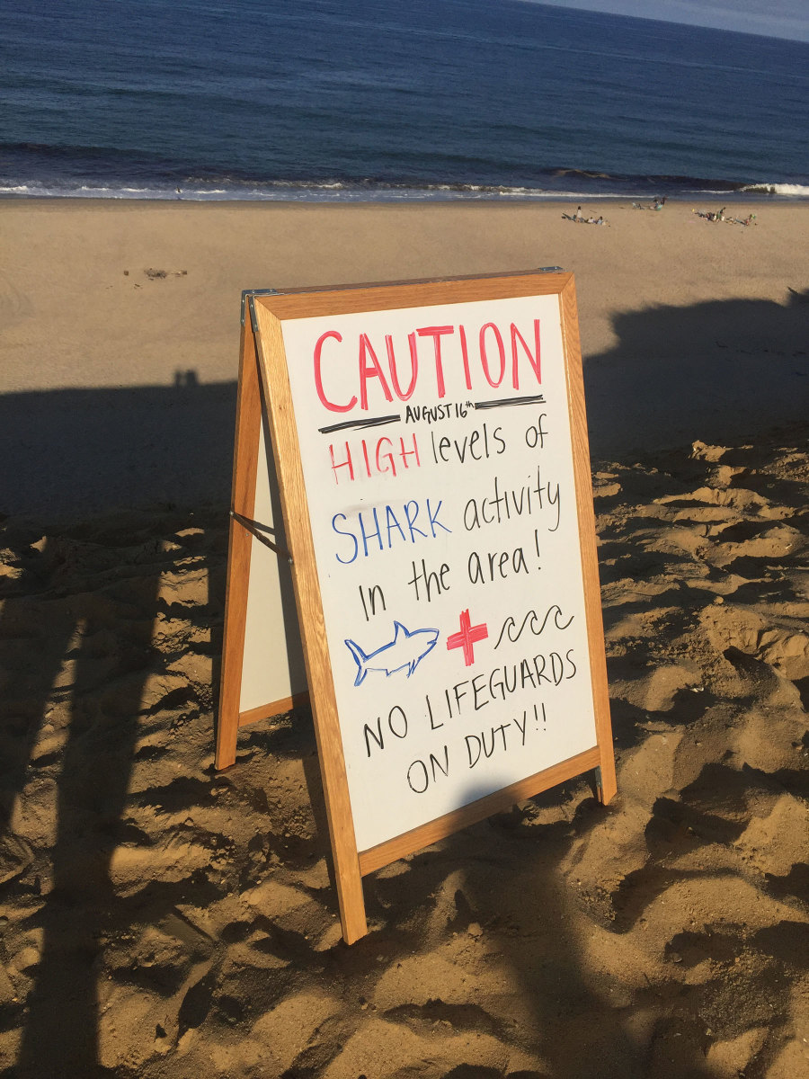 The number of reported shark attacks has increased in recent years near Cape Cod, encouraging local residents to take action.