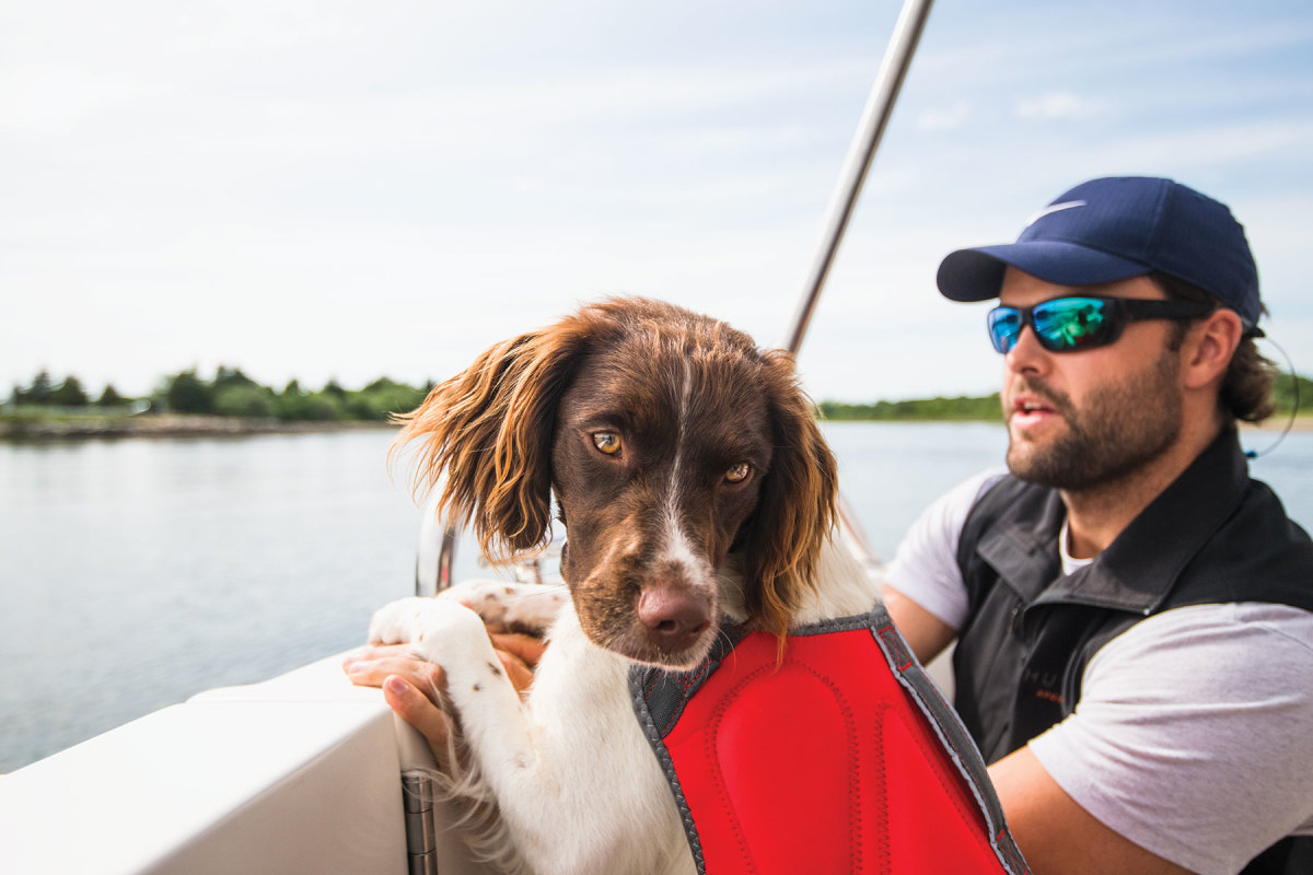 Your dog must wear a well-fitted life jacket.